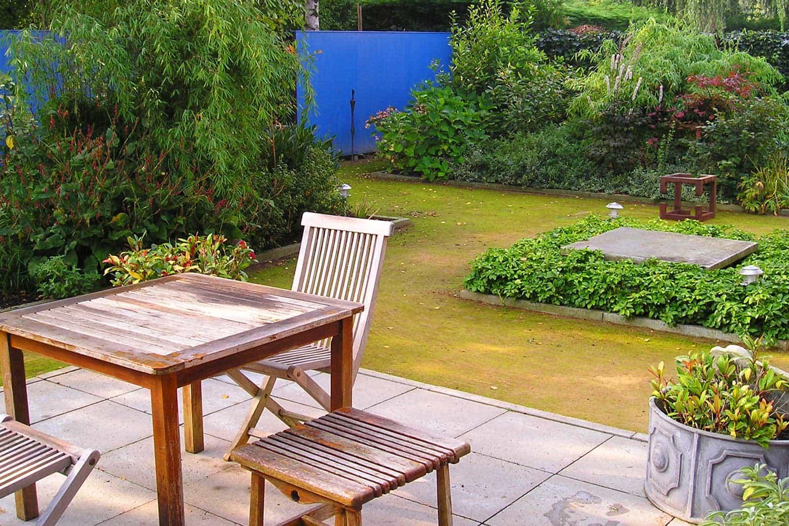 Tuin Met Blauwe Wand Amsterdam 2