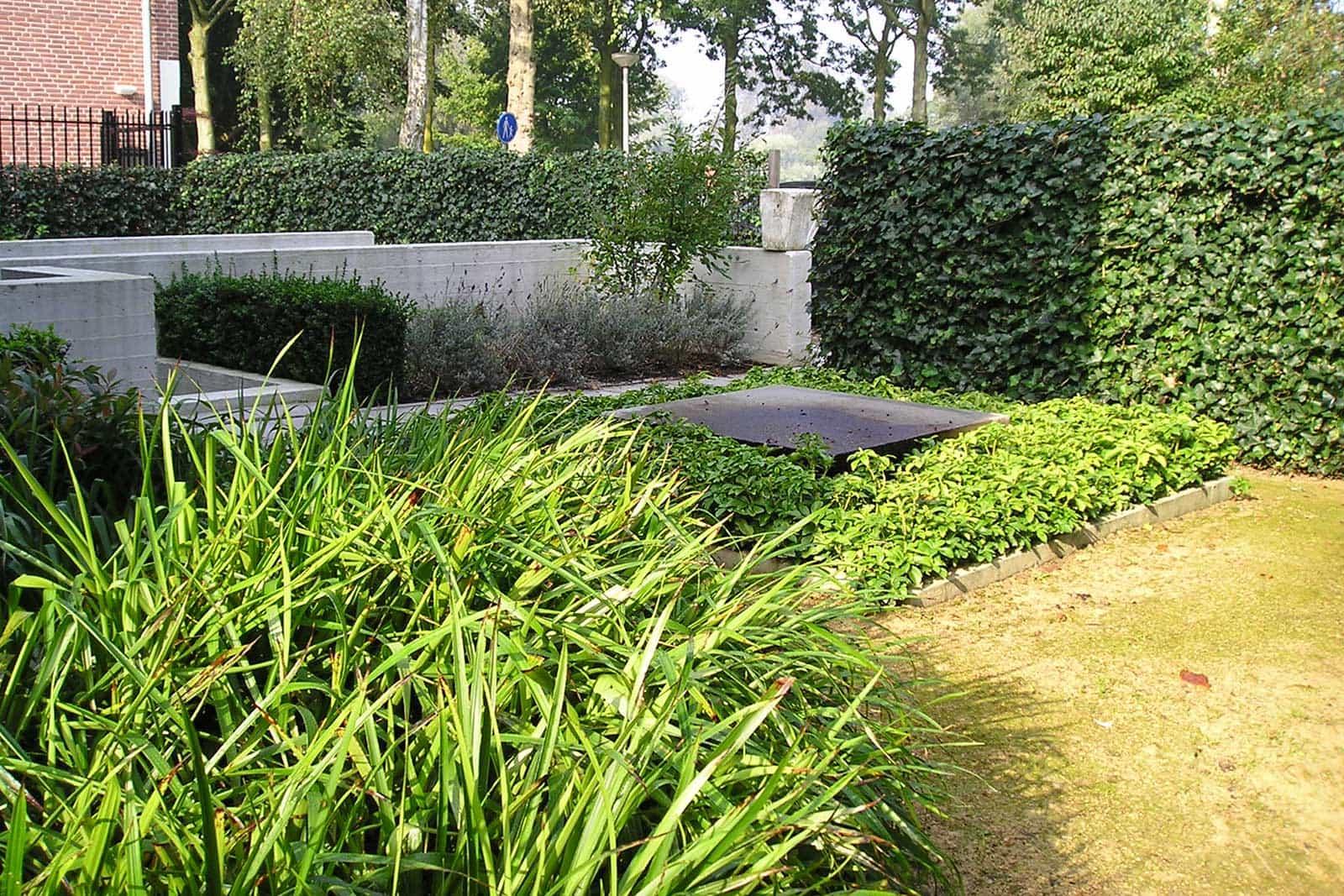 Tuin Met Blauwe Wand Amsterdam 3